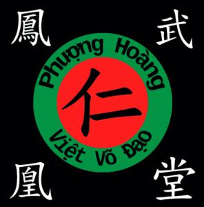 Cours Vo Co Truyen à Danang - Vietnam