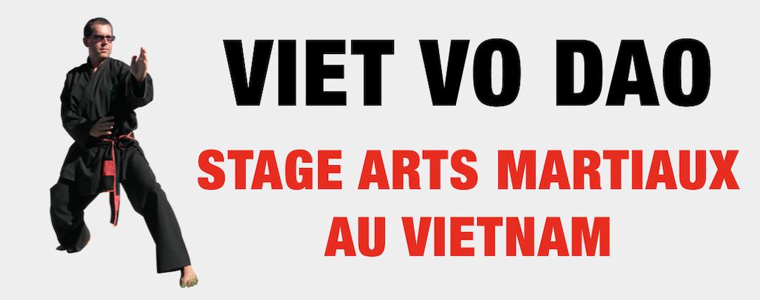 Stage de Viet Vo Dao Vietnam