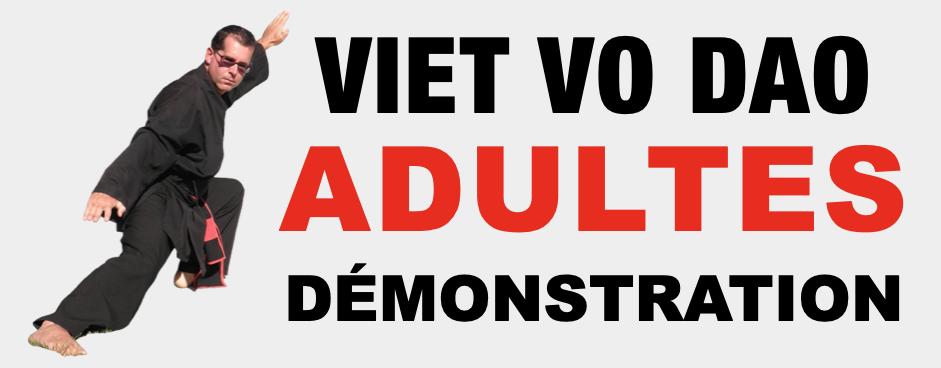 Viet Vo Dao Adultes